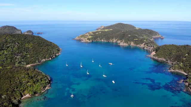 yachts at anchor, bay of islands - bay of islands new zealand stock videos & royalty-free footage