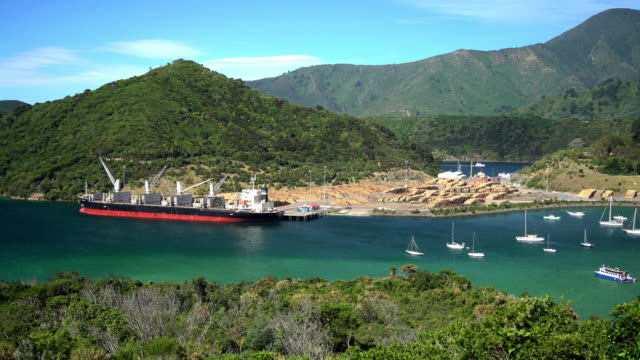 yachts in picton harbor with lumberyard new zealand - forestry industry stock videos & royalty-free footage