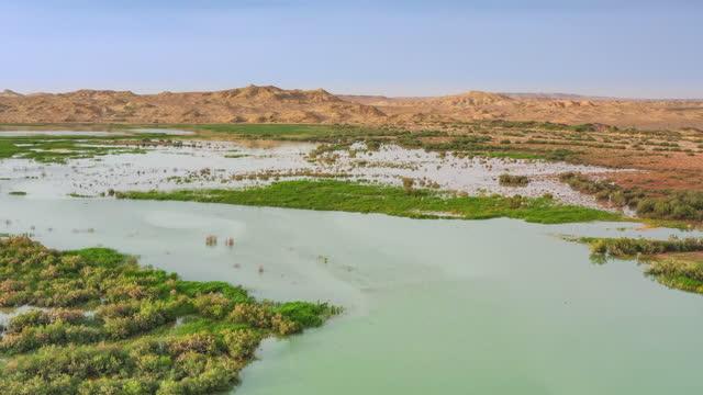 vídeos de stock e filmes b-roll de yadan desert and abundant water and grass can exist harmoniously - water's edge