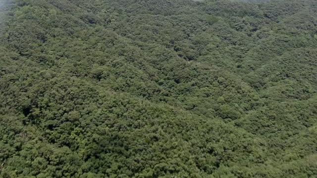 AERIAL, Yambaru National Park, Okinawa, Japan