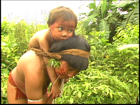 yanomami indians picking herbs with children - yanomami stock videos and b-roll footage