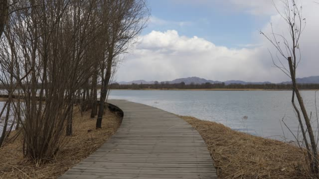 yanqing wild duck lake wetland park, beijing, china - bicycle parking station stock videos and b-roll footage