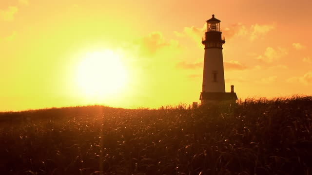ws yaquina head lighthouse at sunset, grass in foreground / newport, oregon, usa - yaquina bay lighthouse stock videos & royalty-free footage
