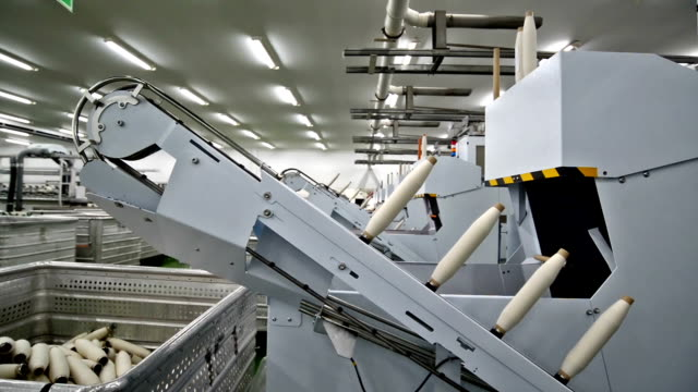yarn tubes transmitted on conveyor belt for packing - ball of wool stock videos and b-roll footage