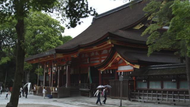 ms yasaka shrine, gion, kyoto, japan - gion stock videos and b-roll footage