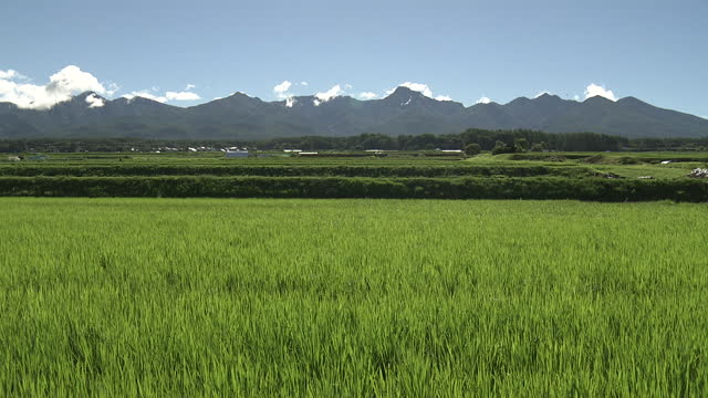 yatsugatake mts over green field, nagano, japan - satoyama scenery stock videos & royalty-free footage