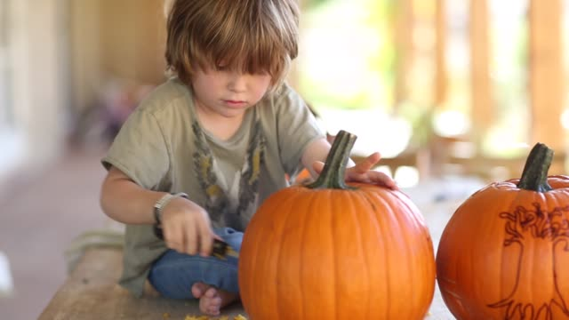 4 year old boy carving a pumpkin - carving food stock videos and b-roll footage