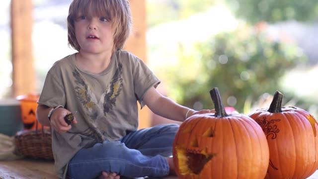 vídeos y material grabado en eventos de stock de 4 year old boy carving a pumpkin - concentración