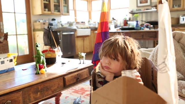 4 year old boy sitting in cardboard ship on couch - lamy new mexico stock videos and b-roll footage
