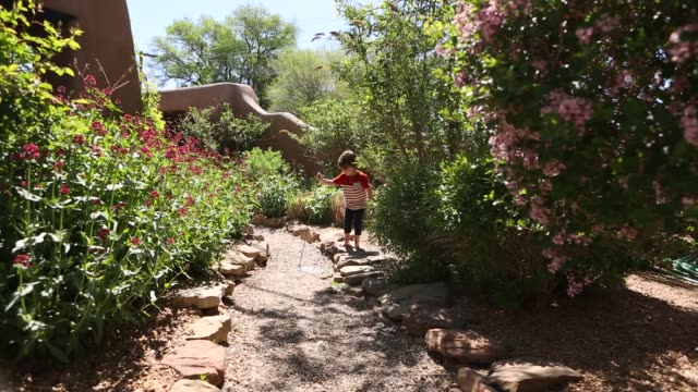 2 year old boy walking - garden path stock videos and b-roll footage