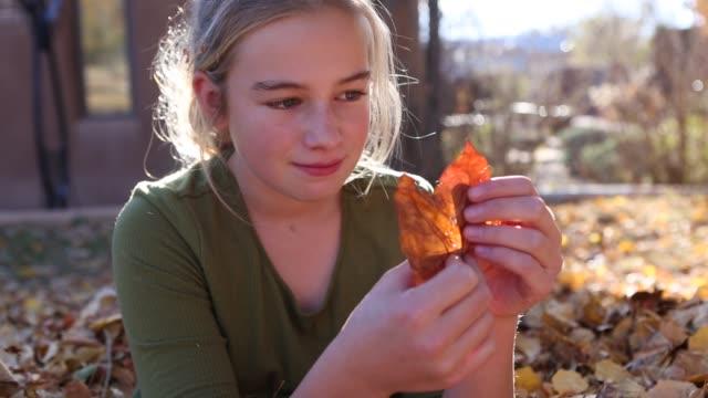 11 year old girl looking at leaf - 10歳から11歳点の映像素材/bロール