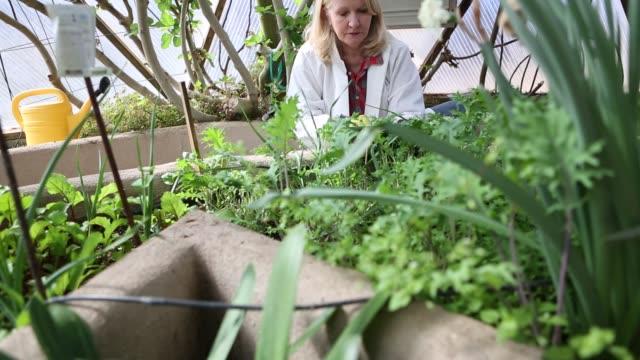 61 year old woman using tablet computer - trädgårdshandske bildbanksvideor och videomaterial från bakom kulisserna