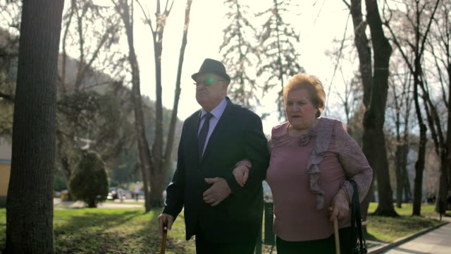 60 years in marriage. elderly couple walking hand in hand in the spa park - walking cane stock videos and b-roll footage