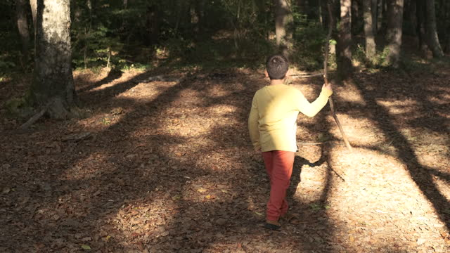 6-7 years old child walking at forest between trees - 6 7 years stock videos & royalty-free footage
