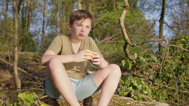 12 years old cute maverick preadolescent boy outside in the green nature eating an apple and digital detox. - leute wie du und ich stock-videos und b-roll-filmmaterial