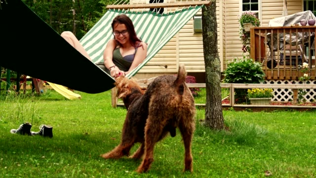 15 years old teenager girl lying in the hammock and playing with her Airedail Terrier dog.
