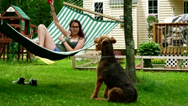 15 years old teenager girl lying in the hammock and playing with her airedail terrier dog. - 14 15 years video stock e b–roll