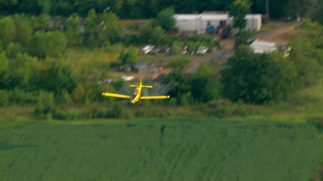 vídeos de stock e filmes b-roll de a yellow crop duster sprays crops with pesticide. - pulverizar