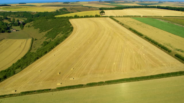yellow fields & harvest bails, north yorkshire, england - cricket stump stock videos & royalty-free footage
