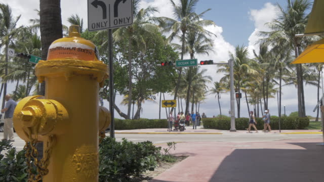 yellow fire hydrant and yellow cab passing on ocean drive, south beach, miami, florida, united states of america, north america - miami beach stock videos & royalty-free footage
