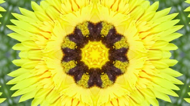 Yellow flower kaleidoscope style