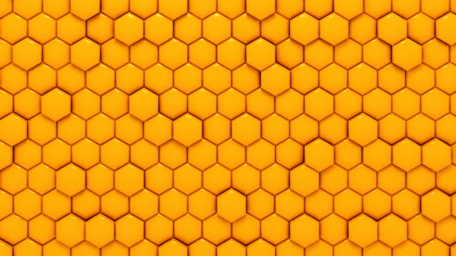 yellow honeycomb - hexagon stock videos and b-roll footage