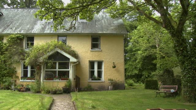 vídeos de stock, filmes e b-roll de yellow house with plants in front yard - trepadeira