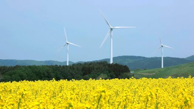 vídeos y material grabado en eventos de stock de paisaje con las turbinas amarillo - plusphoto