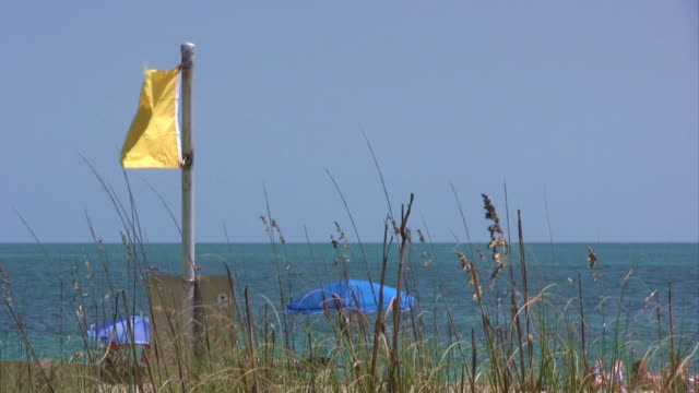 stockvideo's en b-roll-footage met yellow lifeguard flag near ocean shore - waterlijn