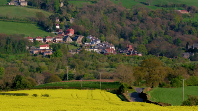 Yellow OilRape Seed Field Grosmont, North Yorkshire, England