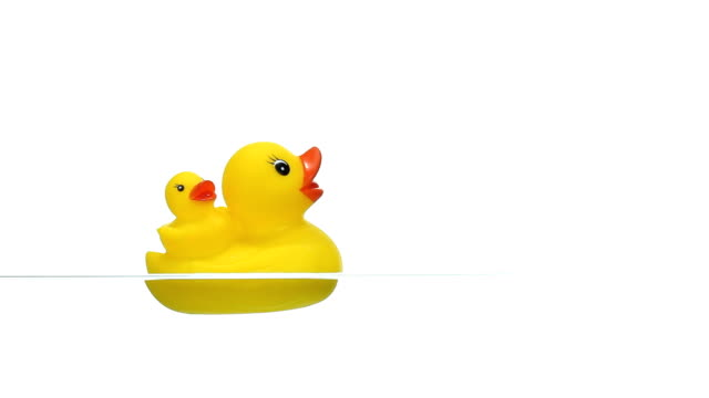 yellow rubber duck floating on water - bath stock videos & royalty-free footage