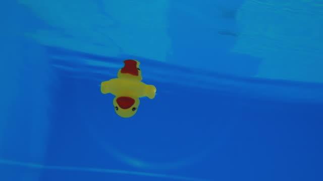 vídeos de stock, filmes e b-roll de amarela pato de borracha flutuando debaixo d'água em uma piscina - animal de brinquedo