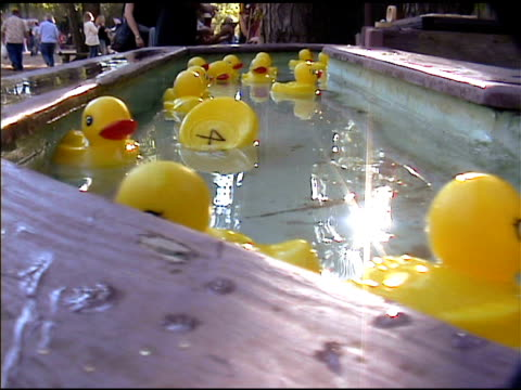 yellow rubber duckies floating by in water 2 - school fete stock videos and b-roll footage