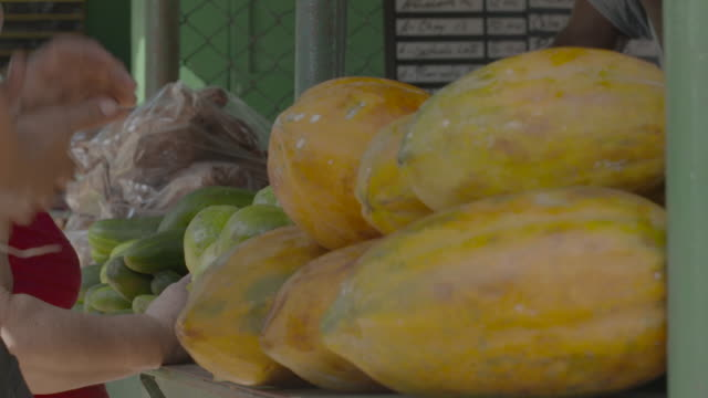 yellow squash and other vegetables on counter at produce stand - other stock videos & royalty-free footage