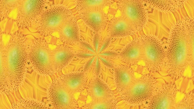 yellow sunflower floral symmetric pattern - natural pattern stock videos and b-roll footage