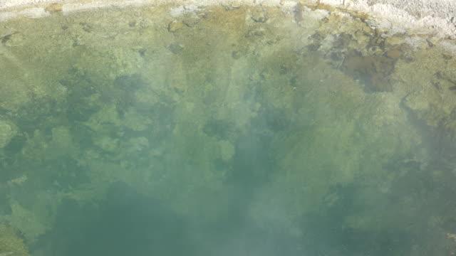 vídeos de stock e filmes b-roll de yellowstone blue funnel spring zoom out at west thumb - piscina térmica