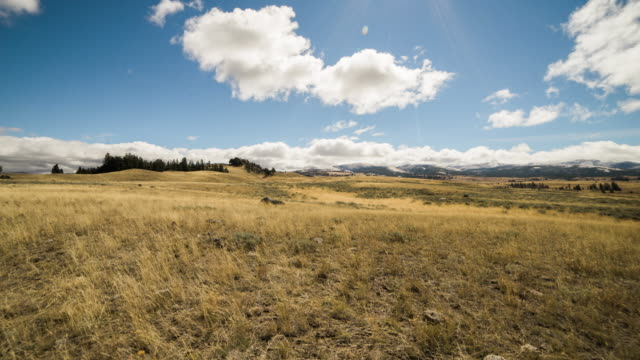 Yellowstone Fields, Travel and time-lapse through Wyoming
