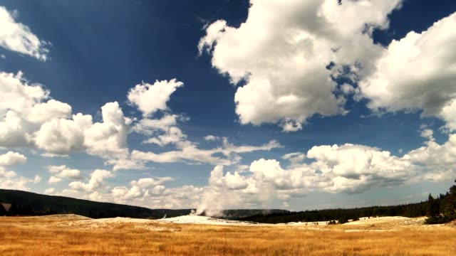 yellowstone hot springs gyser - old faithful stock videos & royalty-free footage