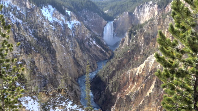 yellowstone lower falls in a canyon - lower yellowstone falls stock videos & royalty-free footage