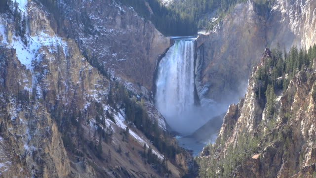 yellowstone lower falls of the yellowstone river - lower yellowstone falls stock videos & royalty-free footage