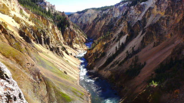 yellowstone national park grand canyon - river yellowstone stock videos & royalty-free footage