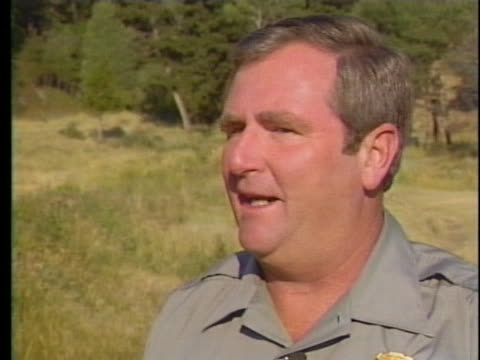yellowstone national park superintendent bob barbee says that forest fires are a natural part of the american west and have beneficial effects - symbiotic relationship stock videos & royalty-free footage