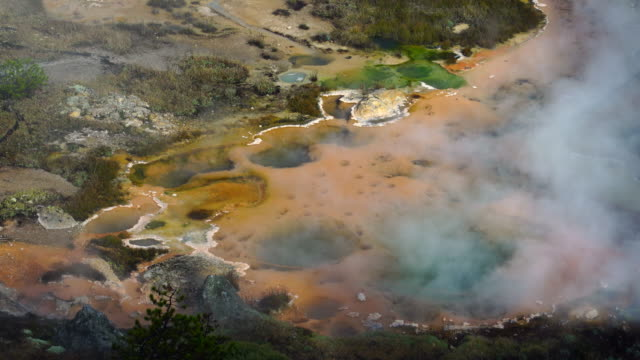 yellowstone national park, unesco world heritage, wyoming, usa, north america, america - イエローストーン国立公園点の映像素材/bロール