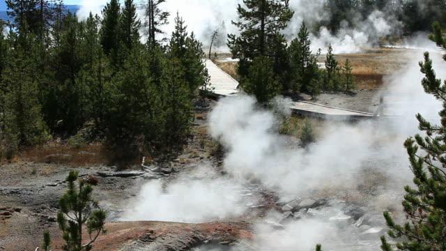stockvideo's en b-roll-footage met yellowstone national park - old faithful geiser