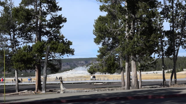yellowstone people gathering to wait for old faithful - old faithful stock videos & royalty-free footage