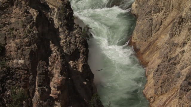 Yellowstone river flows through gorge, Yellowstone, USA