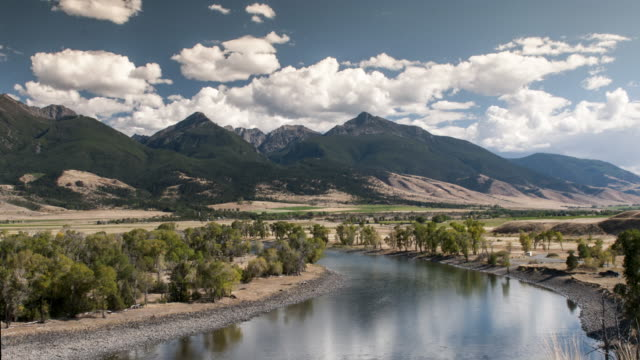 yellowstone river time lapse - river yellowstone stock videos and b-roll footage