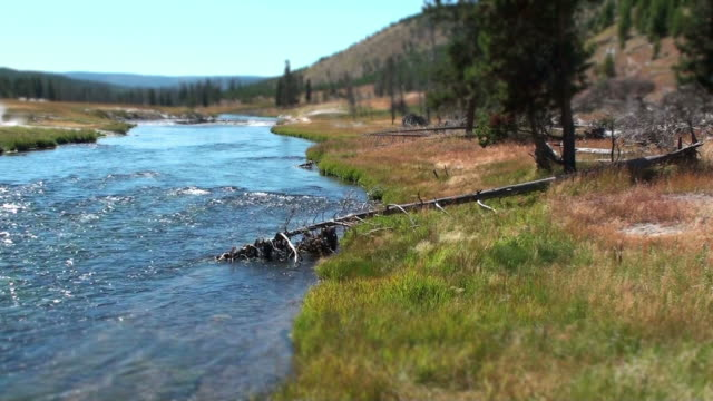Fluss Yellowstone River