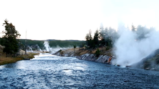 yellowstone river - river yellowstone stock videos & royalty-free footage