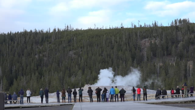 yellowstone tourists standing in front of old faithful - old faithful stock videos & royalty-free footage